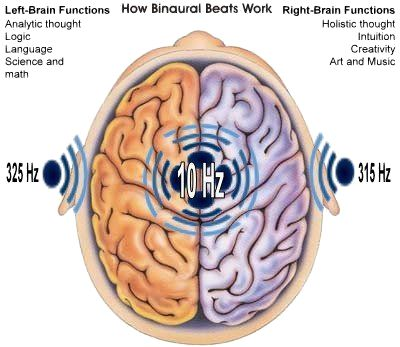 When binaural beat frequencies are used, they do more than entrain one area of the brain, they cause widespread brain synchronization.